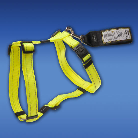 Leads-Safety-Belt-Clip-with-Harness-SBC-Glory