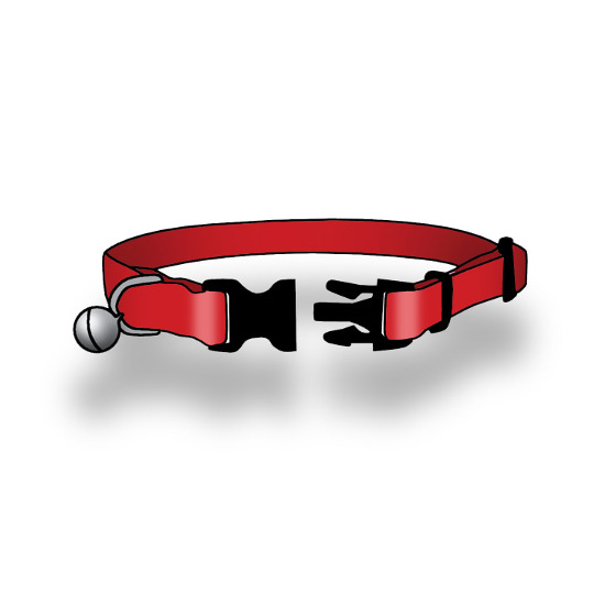 Breakaway Buckle Collar