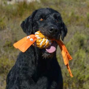 Toys-Cowboyz-Throw-KN-Dog