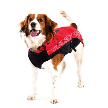 Clothing-Skinz-Sportskin-Dog