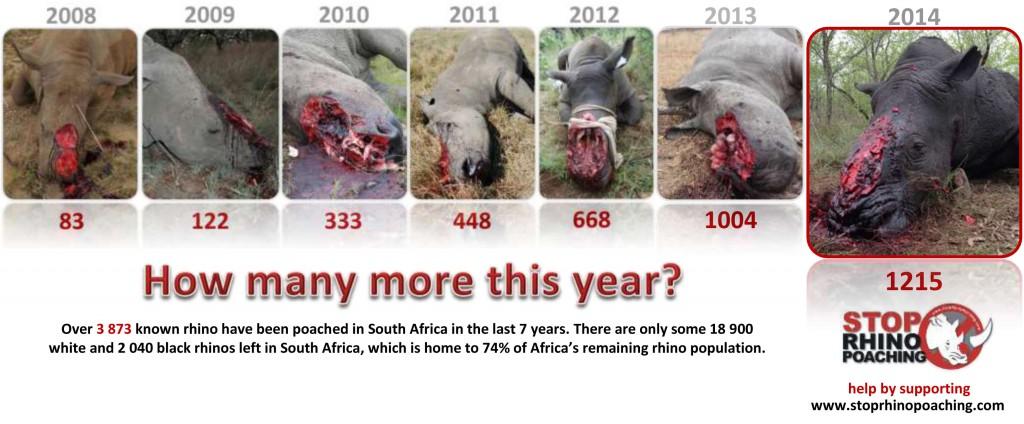 rhino stat pic 2015 LR