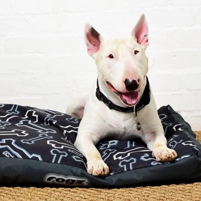 Beds-Podz-Flat-Pod-Dog-BlackBone-Lifestyle