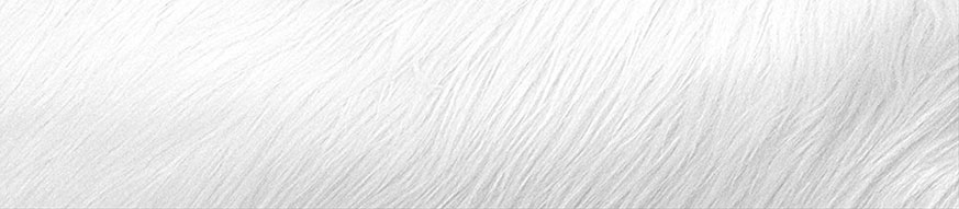 coat_white